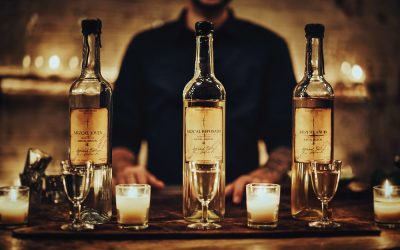 Introduction to Mezcal